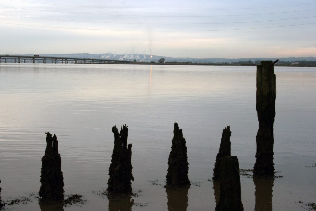 Wooden piles on the Forth, with Grangemouth in the background.