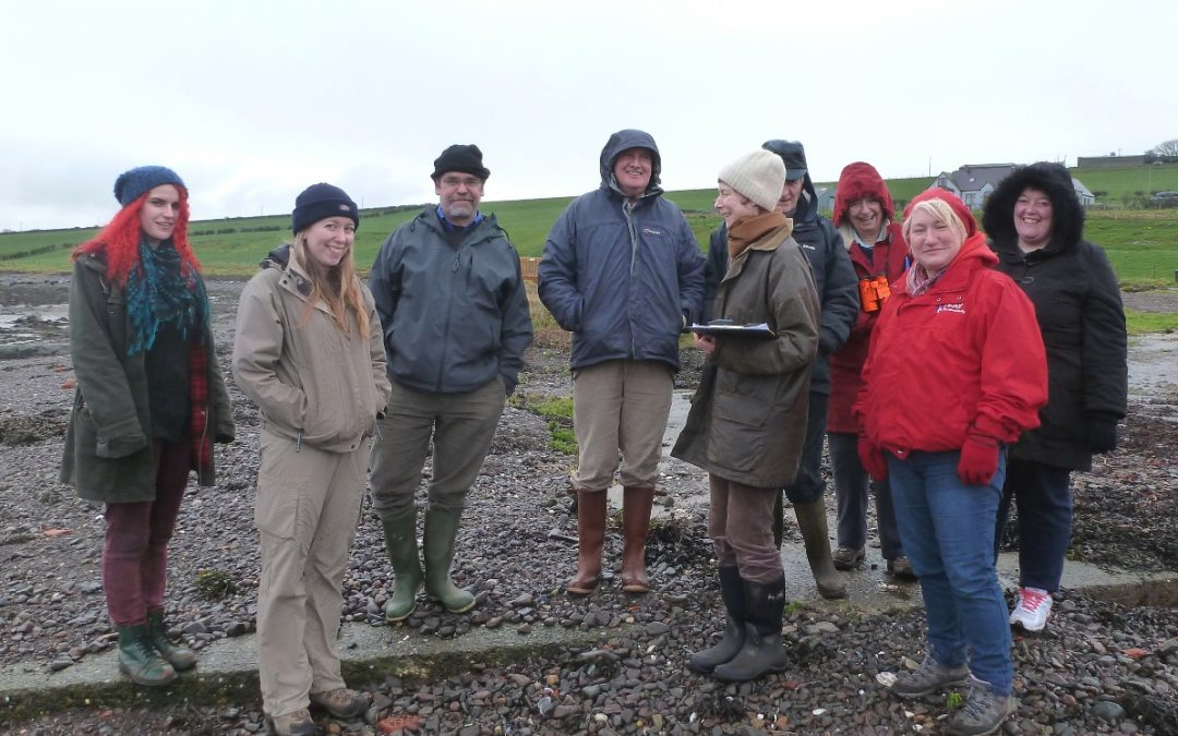 ShoreUPDATES on the Solway Firth