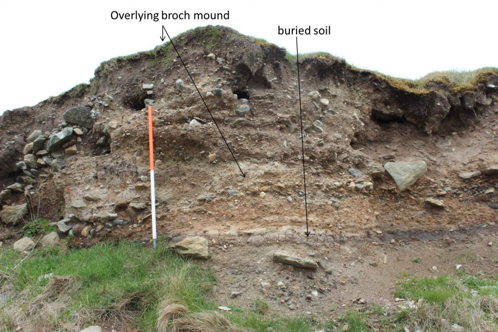 The light browny-grey layer is the ground surface that was there before the broch was built.