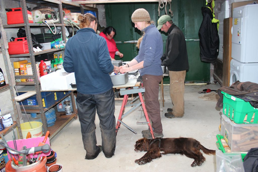 A group of people standing sround a table in a garage washing finds in plastic bowls while a dog lies on the ground