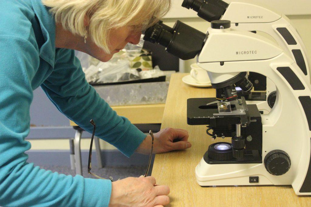 catherine-microscope