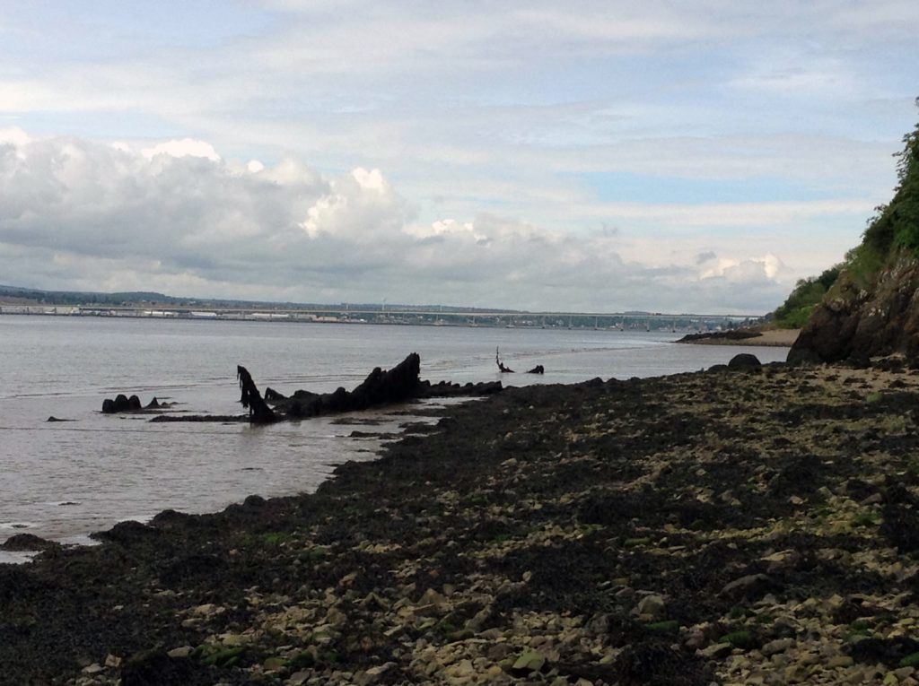 The same scene as the previous image, the boat has decayed to a line of timbers about 1m high