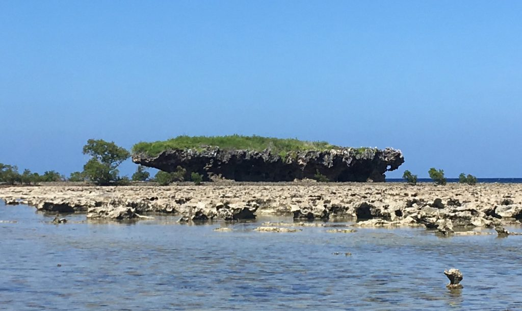 A view across a shallow lagoon and coral reef to a small tidal islet which is shaped like a boat.
