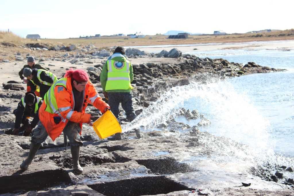 A group of people on a beach, wearing hi-vis, bending over a grid of square pits dug into the intertidal shore, and using buckets to bale out tidal water that has flooded the pits