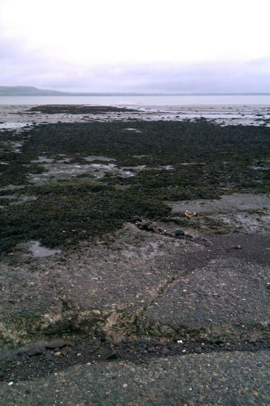 A long concrete slipway, partly covered in seaweed, running into the sea
