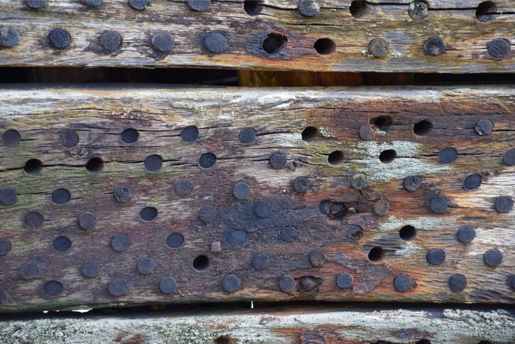 A very close up shot of the grid of small holes in the planking showing the wooden pegs which plug them