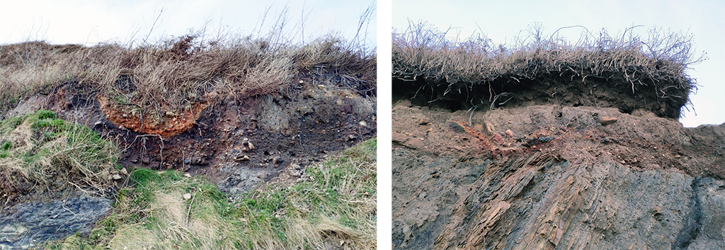 Cross section through two scorched red circular pits cut into soil in the coastal section